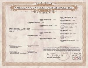 Bobbyna certifikat