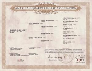 Bueno certifikat