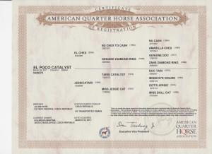El poco certifikat
