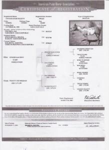 Felicity certifikat 001