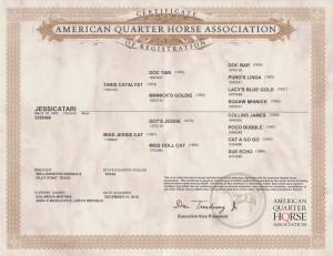 Jessica certifikat