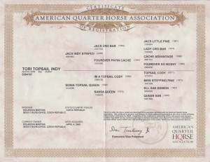 Tori certifikat